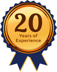 Martech 20 Years of Experience